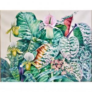 jungle orchids