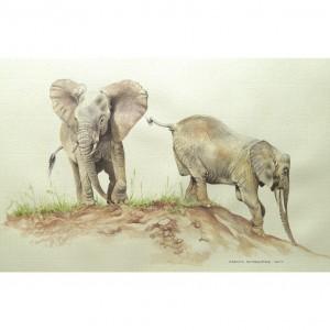 two elephants